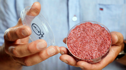 The Frankenburger: Worlds First Test Tube Burger That Could Possibly Solve The Global Food Crisis