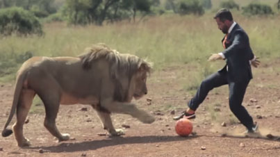 Lion Whisperer: Kevin Richardson Plays Soccer With Wild Lions In A Business Suit