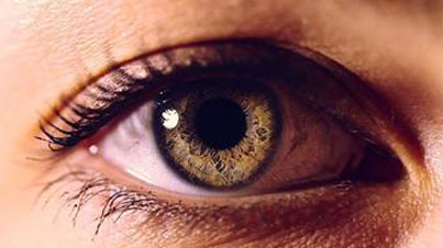Eyes Are The Windows To Your Health