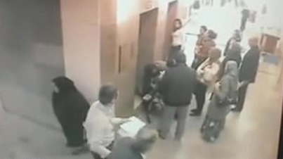 Disgusting: Middle Eastern Women Takes A Massive Dump In A Crowded Public Place
