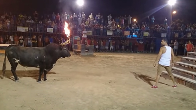 Punk Gets Absolutely Destroyed By The Most Satanic Bull Ever