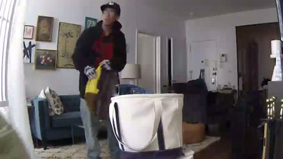 New York Man Watches His House Get Robbed Via His Smartphone