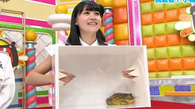 "Japanese Girls Lose Their Sh*t While Playing A Game Of ""Whats In The Box?"""