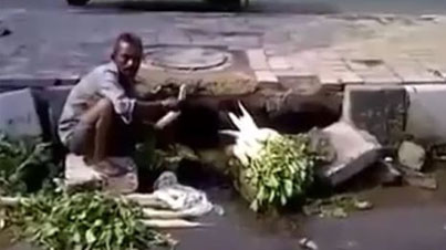 Meanwhile In India: Man Washes Vegetables In A Sewer Water