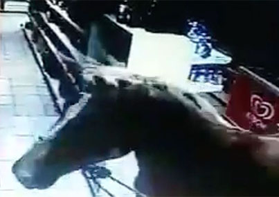 Man Robs A Store With A Horse