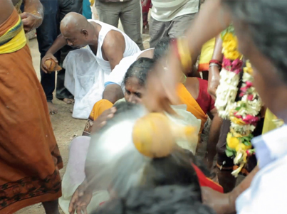 Indian Priests Smash Coconuts On Devotees' Heads Panchod