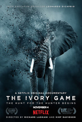 The Ivory Game (Official Netflix Trailer)