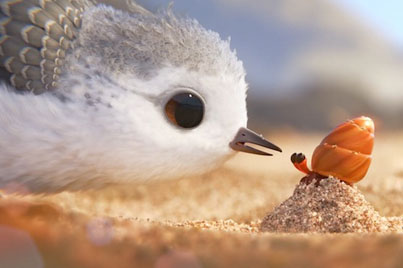 Piper (Animated Short Film by Pixar)