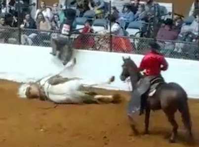 Bucking Horse Dies Instantly After Running Head First Into A Wall 😭😭😭