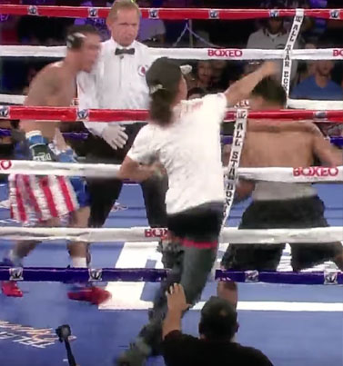 Nut Job Throws A Punch At Boxer During Fight 💀💀💀
