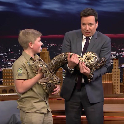 Steve Irwin's Son Continues His Dad's Legacy On 'The Tonight Show' 🐊🐊🐊