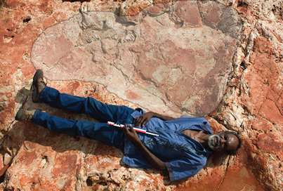 World's Largest Dinosaur Footprint Discovered In Oz
