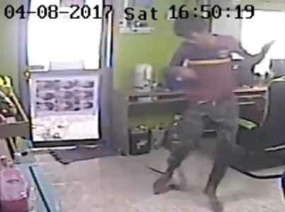 Snake Attacks People At An Internet Cafe 😂😂😂
