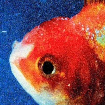 Big Fish Theory by Vince Staples (Official Album Stream)