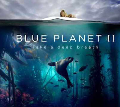 Planet Earth: Blue Planet II (Official Trailer)