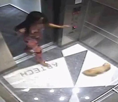 Evil B*tch Stomps And Kicks A Dog In An Elevator 😤😤😤