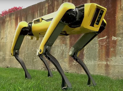 THE NEW PET DROID 😨😱😨