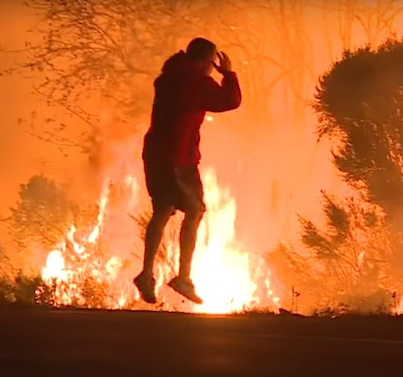 Man Risks Life To Save Wild Rabbit During SoCal Wildfire 🐇💕