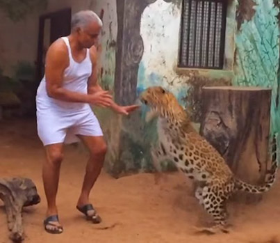 Indian Man Shares His House With Leopards And Bears 😱🙏🇮🇳