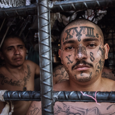 MS-13: The Homegrown Gang Trump Wants To Deport 😈😈😈