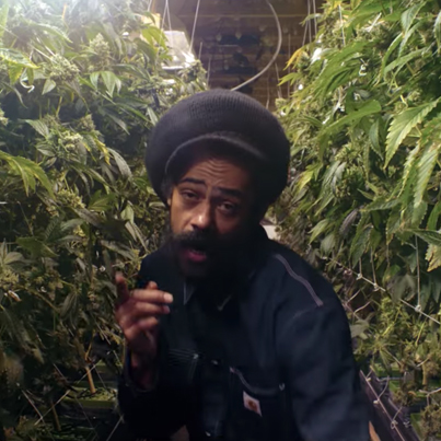 Medication (Remix) by Damian Marley x Stephen Marley x Wiz Khalifa x Ty Dolla $ign (Official Music Video) 💸🔥🔥