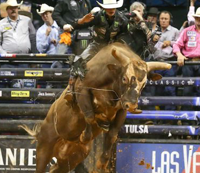 Meet The Best Bull Rider Of All Time 👏👏👏
