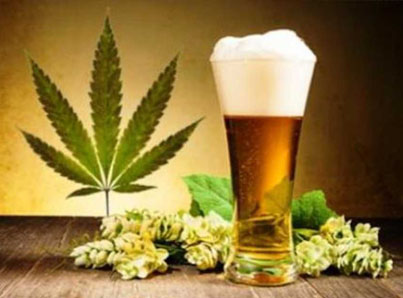 Scientists From Toronto Brew The World's First Cannabis Beer 🤔🍻✅