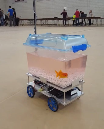 What Episode Of Black Mirror Is This??? 😲👌 Fish Controls The Direction Of The Cart 🙌😂