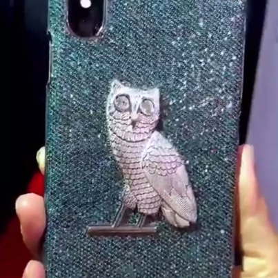Drake Reportedly Dropped $400K On This OVO iPhone Case 💎💎💎🔴👑