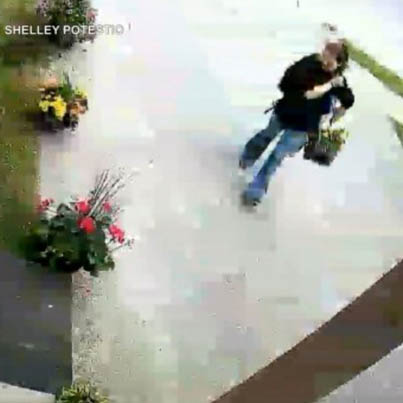 Bucket Ting Steals Flowers From A Brampton Home 😫😂💐🔴👑