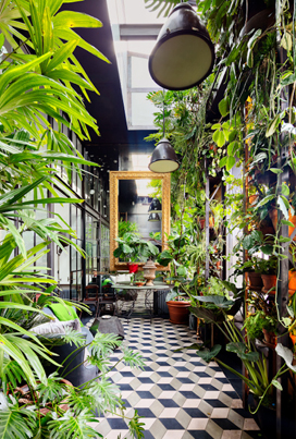Inside A $10M NYC Penthouse With A Tropical Garden 🌴🏠🌴