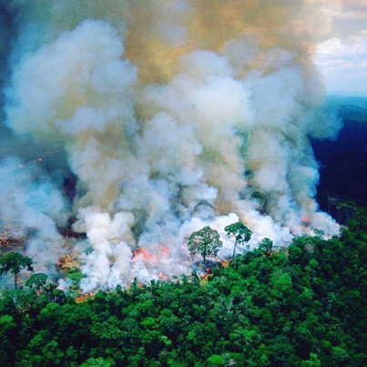 The Amazon Rainforest Responsible For 20% Of World's Oxygen Is On Fire